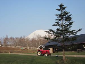 梅田ランチ farm.jpg